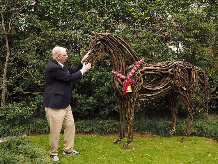 This driftwood horse sculpture in my front yard was purchased in Saratoga Springs.